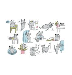 Set of problem with cat behavior kitten meowing vector