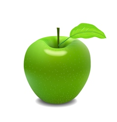Big green apple vector