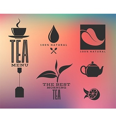 Tea Abstract icons and labels on smooth vector image