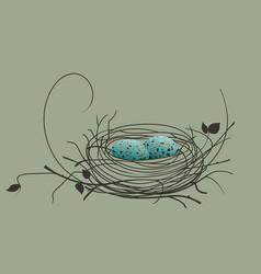 bird eggs in the nest vector image