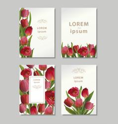 bouguet of tulips vector image