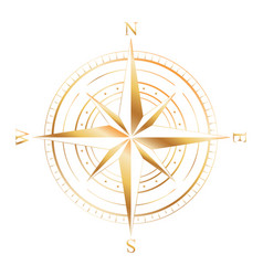 gold compass rose vector image vector image