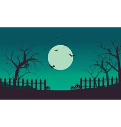 Halloween bat and pumpkins silhouette vector image