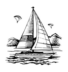 active sailing and parachuting vector image vector image