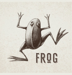 Frog painted in engraving style eps8 rgb vector