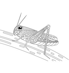 monochrome grasshopper coloring page black over vector image vector image