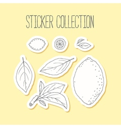 Lemonade sticker collection with hand drawn lemon vector