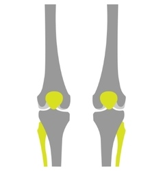 Flat Icon of Knee on White Background vector image vector image