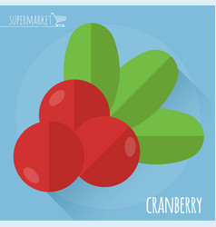 fresh ripe cranberry vector image