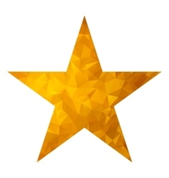 gold triangle star white vector image vector image