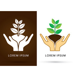 hands holding tree with leaf vector image