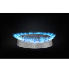 kitchen gas burner vector image