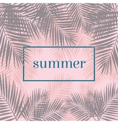 Summer poster Palm leaves background Modern vector image vector image