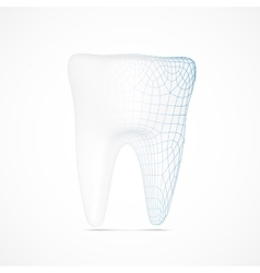 tooth wireframe vector image