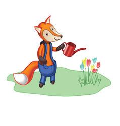 Cartoon fox in trousers watering flowers vector