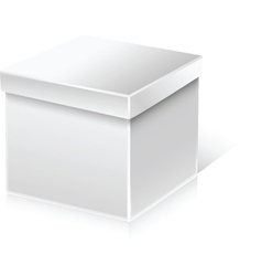 Plain box vector