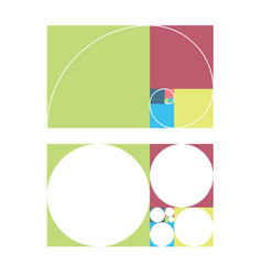 golden ratio template fibonacci vector image