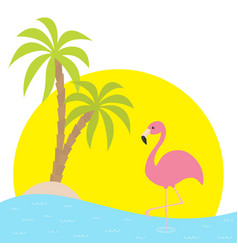 Pink flamingo standing on one leg two palms tree vector