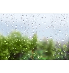 Raindrops on window glass vector