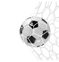 Realistic soccer ball or football ball in neton vector