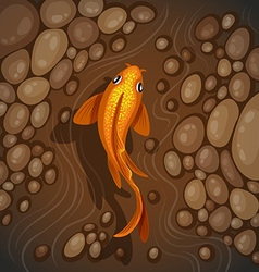 Carps underwater top view vector