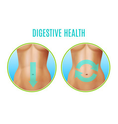Digestive health realistic design vector
