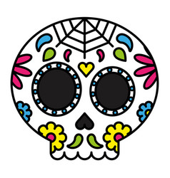 day of the dead sugar skull colorful floral vector image