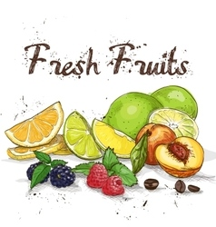 fresh fruits background vector image