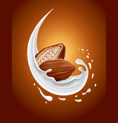 milk splash with cacao nut vector image