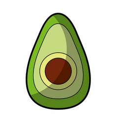 Avocado fresh vegetable icon vector