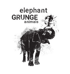 Silhouette elaphant in grunge design style animal vector