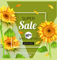 summer sale banner template with sunflower vector image
