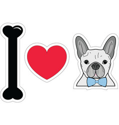 I love french bulldog hipster with blue tie bow vector