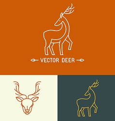 Deer logo template in trendy linear style vector