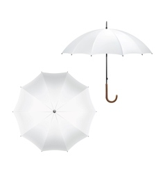 Blank white umbrella vector