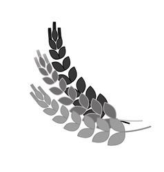 Grayscale wheat branches icon image design vector