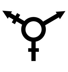 sign symbol of gender equality vector image vector image