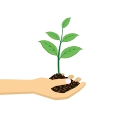 Green plant in hand vector