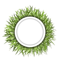 Grass frame green for your design vector image vector image