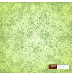 Scrible background vector