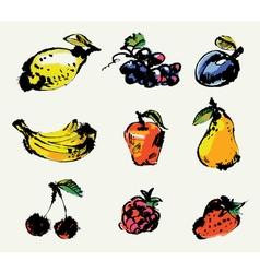 Set of fruits hand painted vector