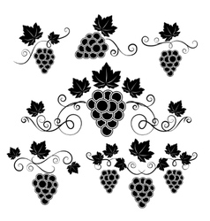 Winery design elements set vector