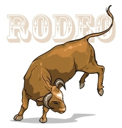 Rodeo bull isolated vector