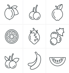 Line icons style fruit icons set design vector