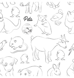 Animals pets pattern vector