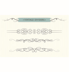 hand drawn flourishes text divider graphic vector image