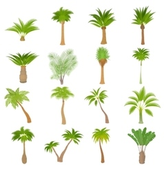 Different palm trees icons set cartoon style vector