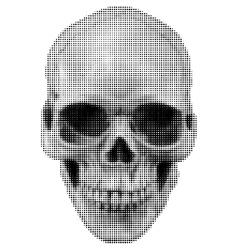 Skull halfton fas vector