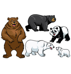 bear set in cartoon style vector image vector image