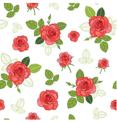 Vintage red roses and green leaves on white vector